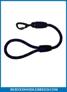 Kruz Short Traffic Leash