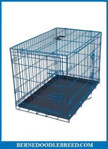 Internets Best Wire Dog Kennel
