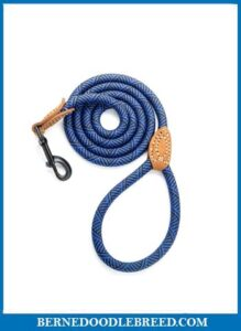 Mile High Life Leather Rope Leash