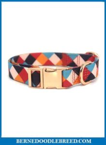Rhea Rose Durable Personalized Dog Collar