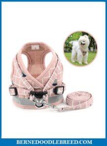 Zunea No Pull Small Dog Harness